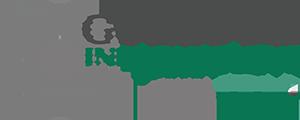 Logo Guézouli Informatique